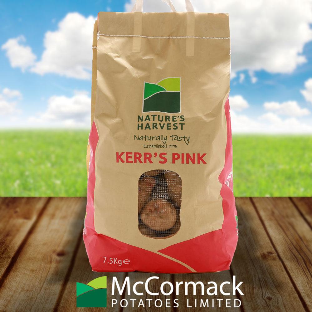potato kerrs pink